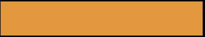 logo_goeiezinnen_oranje